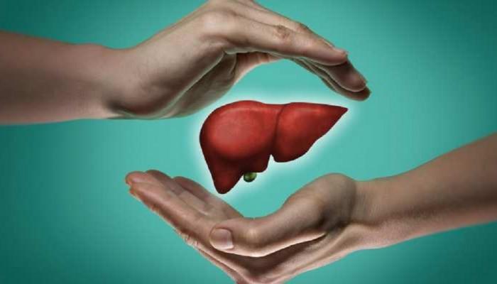 वेळीच उपचार केले तर जीव वाचेल, liver damage होतंय याचा इशारा देतात ही ९ लक्षणं