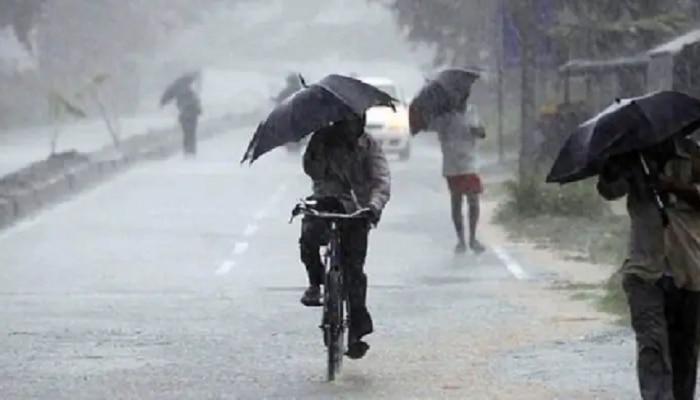 Maharashtra Monsoon Update | राज्यात  पुढील 10  दिवस पावसाची दांडी, हवामान खात्याचा अंदाज, बळीराजा चिंतेत