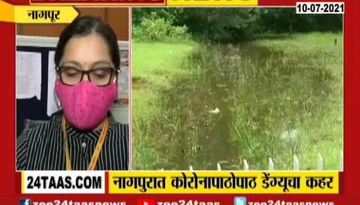 Dengu Enter In Nagpur After Corona Update