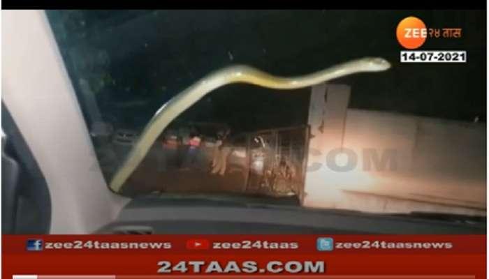 VIDEO : धावत्या कारच्या काचेवर जेव्हा साप येतो; त्यानंतरचे 2 किमी