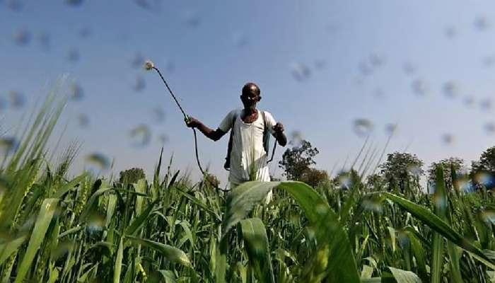 शेतकऱ्यांसाठी आनंदाची बातमी, पिकविम्यासाठी २३ जुलैपर्यंत मुदतवाढ