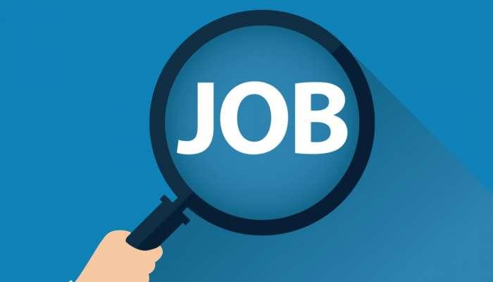 बेरोजगार आहात, नोकरी शोधताय? कुत्रा सांभाळण्यासाठी मिळतोय लाखात पगार, पाहा कुठे?