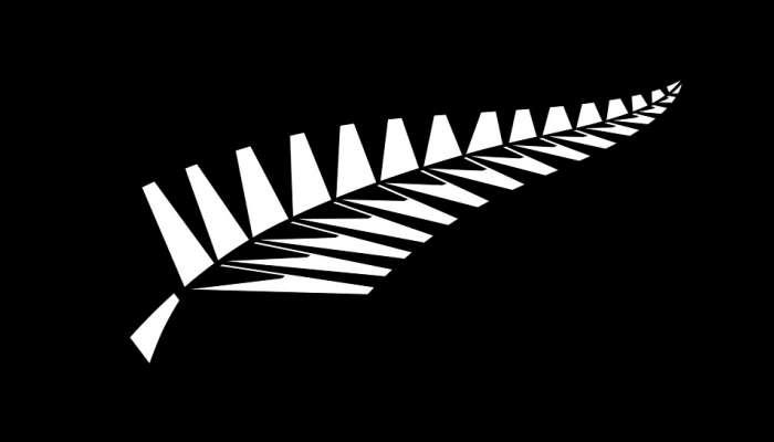 न्यूझीलंडच्या दिग्गज क्रिकेटपटूची प्रकृती चिंताजनक; रुग्णालयामध्ये लाइफ सपोर्टवर