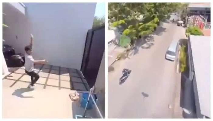 कॅमेरा सुरू असलेला मोबाइल घेऊन पोपट उडाला, पुढे कॅमेऱ्यात जे कैद झालं ते मजेशीर... VIDEO