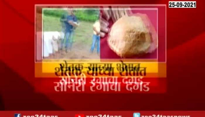 Osmanabad Golden Stone Found In Farm